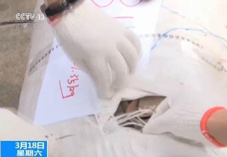 为了逃避缉私部门的打击,朱某在这批夹藏穿山甲鳞片的木材进口报关时,故意让他人以虚假身份信息报关。